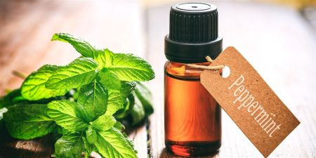 About Peppermint Oil Uses and Benefits